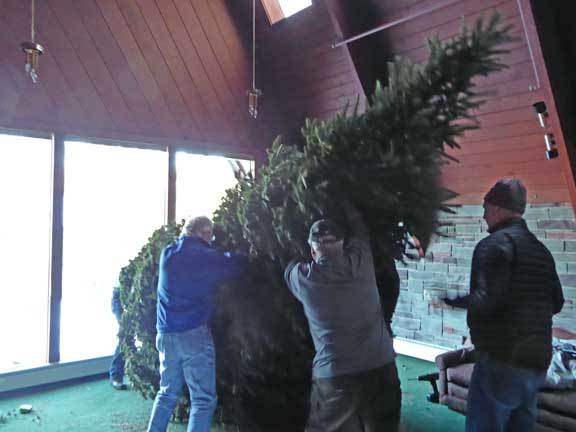 The crew lifting the Birch Ridge Inn Christmas Tree into place.