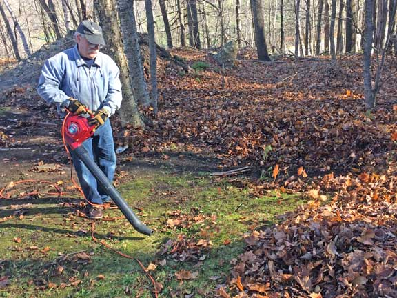 """""""Leaf Rodeo 2017 """" underway with the assist of a leaf blower today at the inn"""