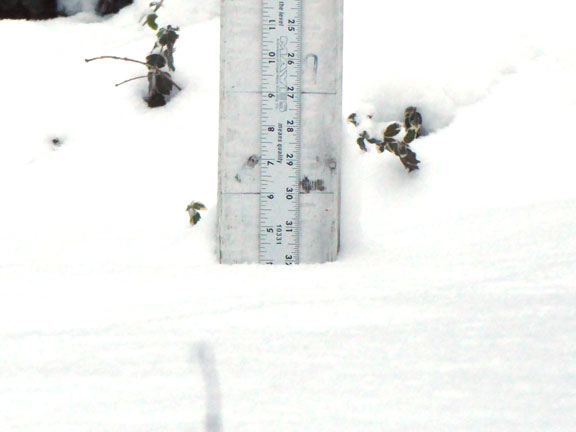 4 inches of snow fell at the snow stake at the Birch Ridge Inn today.